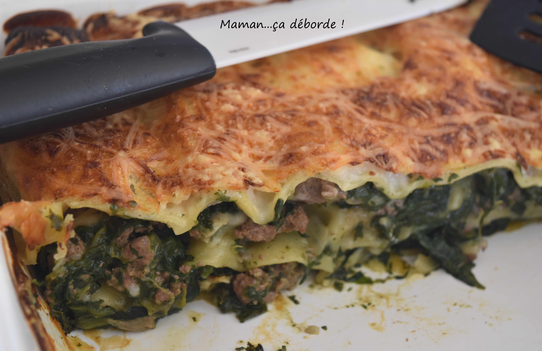 Lasagnes aux épinards et au boeuf1