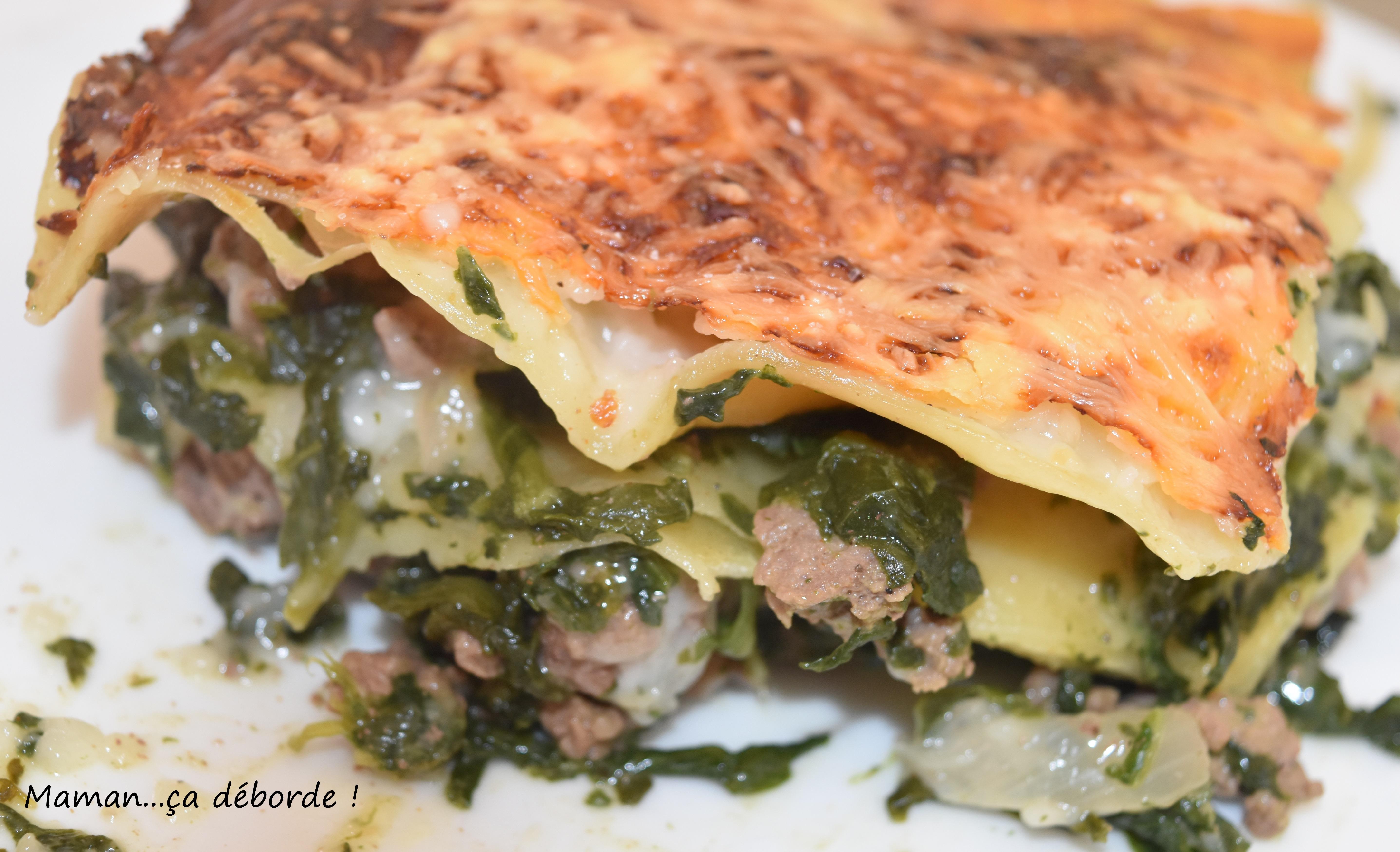 Lasagnes aux épinards et au boeuf2