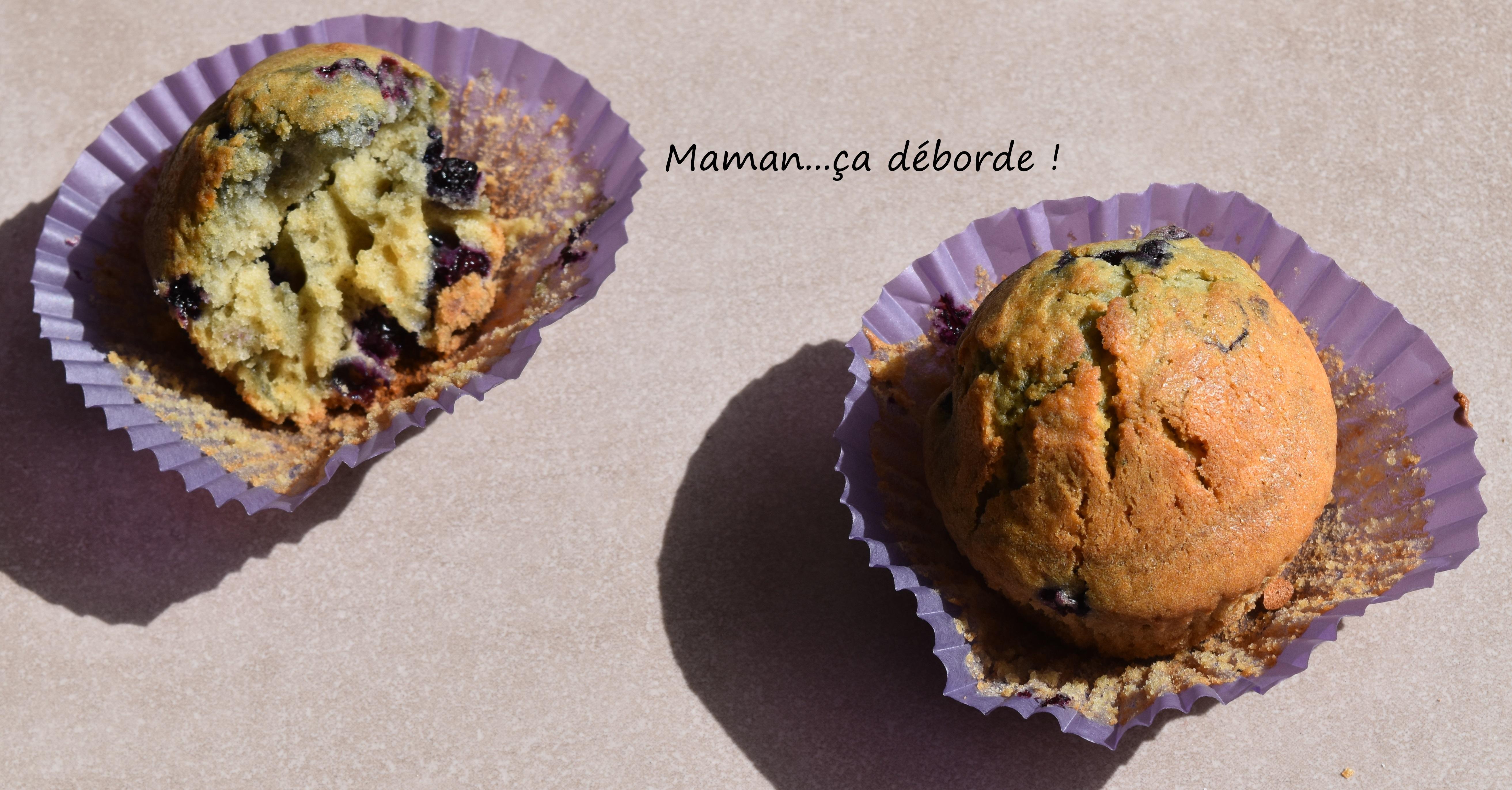 Muffins à la myrtille2