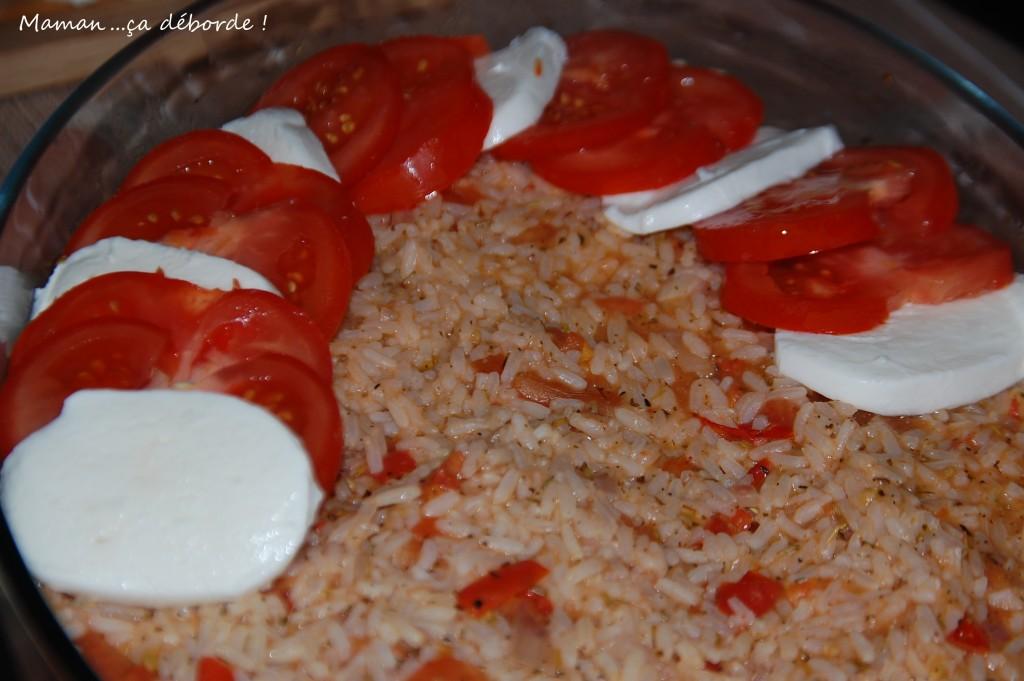 Gratin riz,tomate, mozzarella